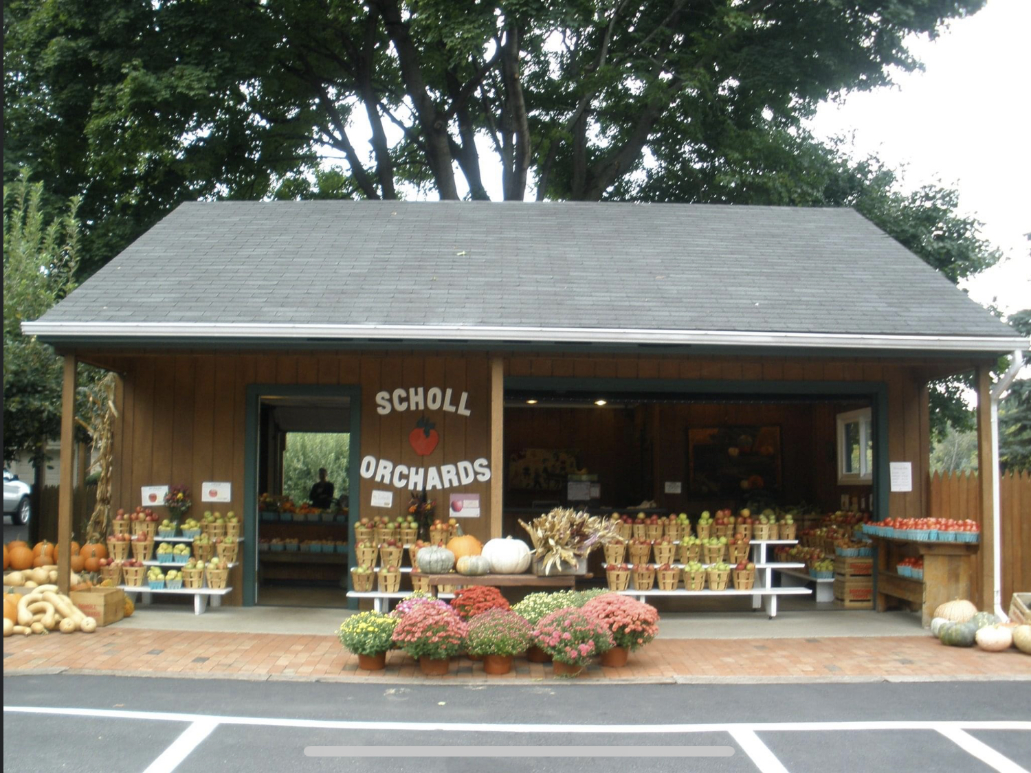 Scholl Orchard 15